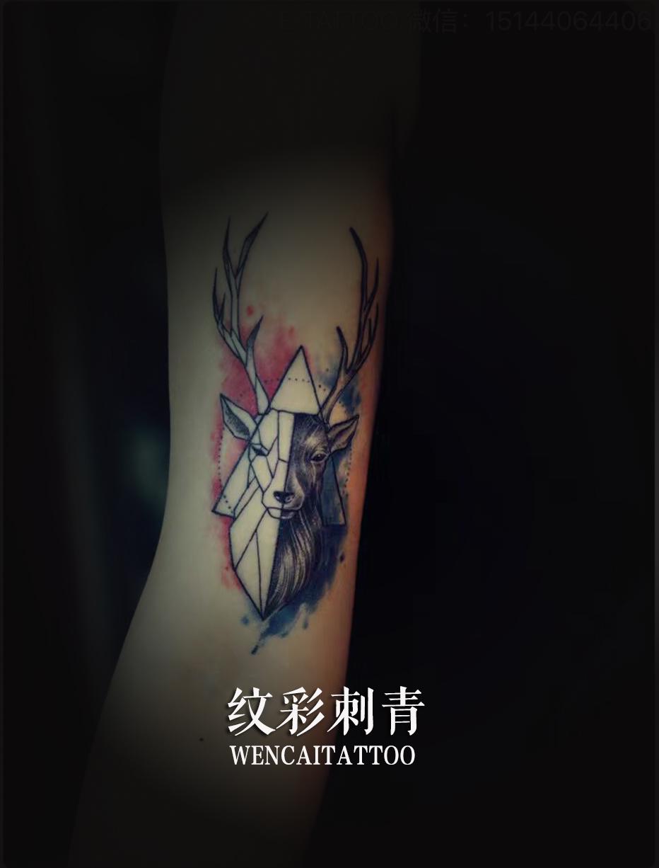 青岛花林小区的王先生手臂上的小鹿纹身图案