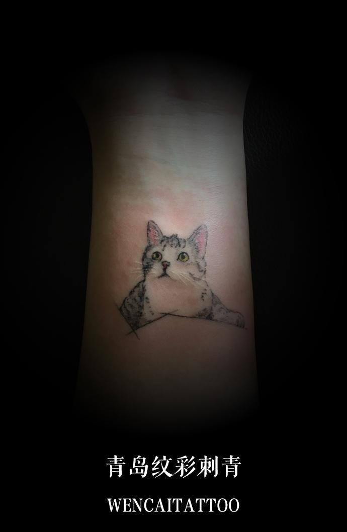 靳小姐的小臂可爱猫咪纹身