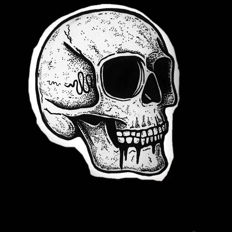 青岛正商蓝海港湾做兽医的寇先生骷髅纹身手稿